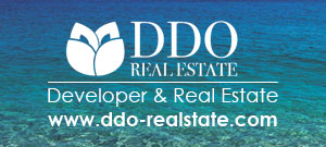 Developer & Real Estate